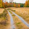 16  G Quebec Fall Road V