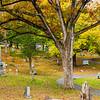 36  G Pennsylvania Cemetery V