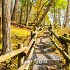 48  G Trail From Raymondskill Falls, Pennyslvania