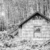 101  G Abandoned Home BW
