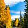 72  G Icicle Canyon Views Road V