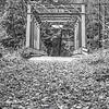 95  G Abandoned Bridge BW V