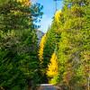 59  G Icicle Canyon Views Road V
