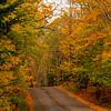 24  G Fall Road V