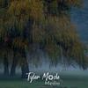 21  G Lewisville Willows Fog