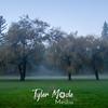 17  G Lewisville Fog Willows