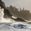 228 G Cape Disappointment Waves