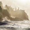 29  G Cape Disappointment Waves and Gull