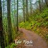 37  G Trail