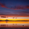 11  G Columbia River and Mount Hood Sunrise