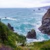 38  G Oregon Coastal View