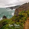 31  G Coastal North View and Trail