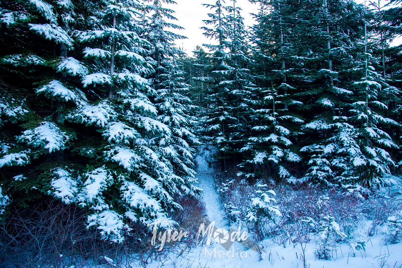 22  G Snowy Path