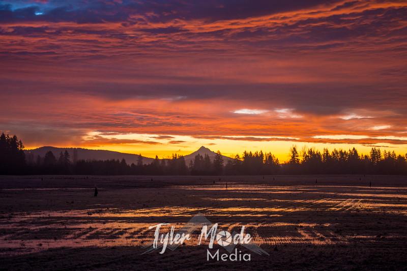 1  G 1 2 19 Pre-Sunrise Mount Hood