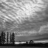 4  G The Old Barn Sunset BW