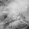 23  G Snowy Ridge BW V