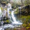 15  G Panther Creek Falls