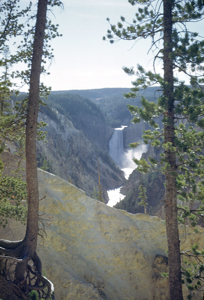 Lower Falls from Artists Point 1948