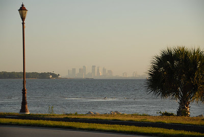 "This is the view of the Tampa skyline I see every day when I leave base.  Taken on ""Cloudy"" WB."