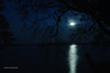 Moonrise<br /> RKM_5783