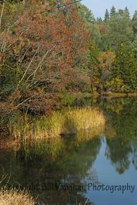 Lake Theodore, Auburn, Ca 2007