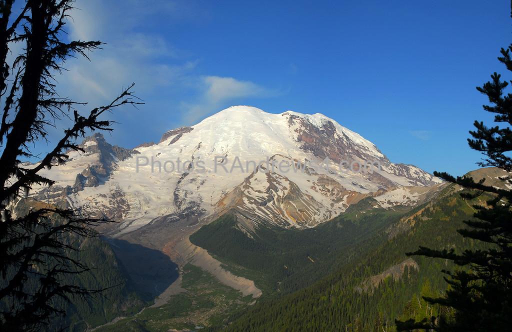Mt. Rainier from Sunrise Point