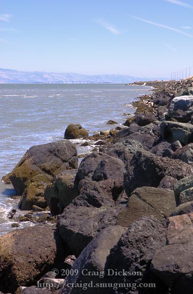 2009.07.31 Foster City Shoreline