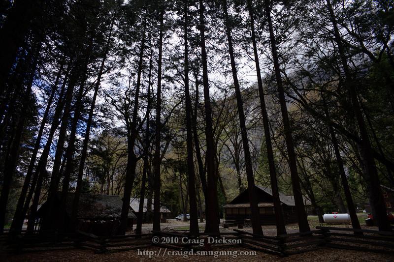 Near the Yosemite Pioneers' Cemetery