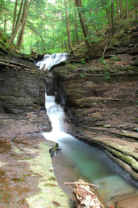 Waterfall and beginning of flume on west branch