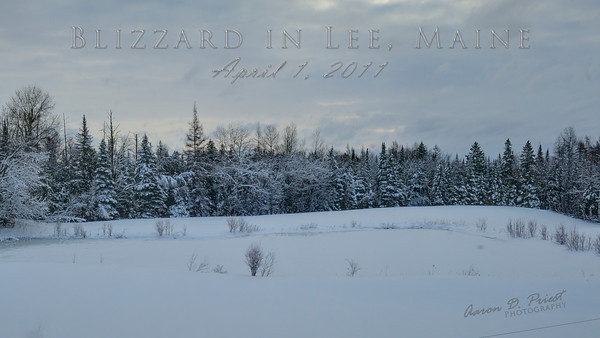 2011-04-01 Blizzard in Lee, Maine