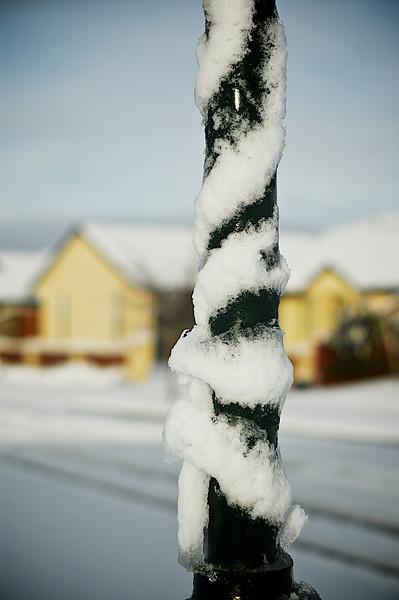 Snow_2011-08-16_09-13-09_DSC_6715_©RichardLaing(2011)