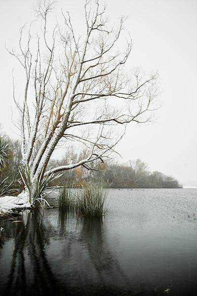 Snow_2011-08-15_09-52-44_DSC_6669_©RichardLaing(2011)