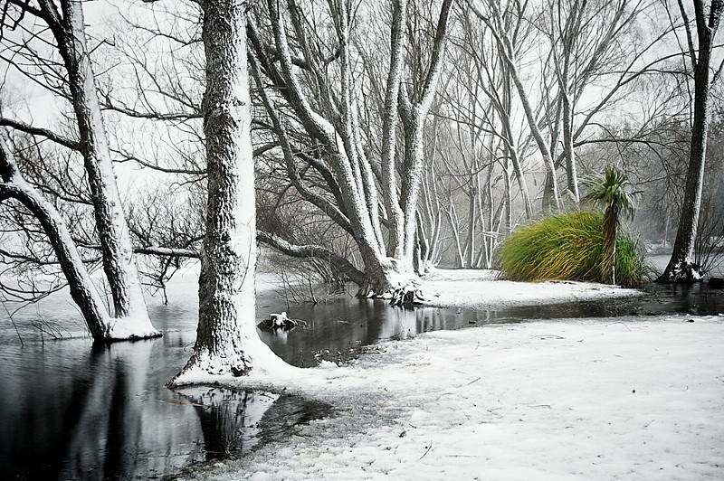 Snow_2011-08-15_09-44-38_DSC_6660_©RichardLaing(2011)