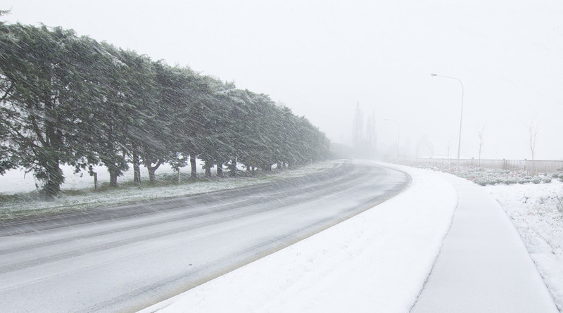 Snow_2011-08-15_09-27-22_DSC_6645_©RichardLaing(2011)