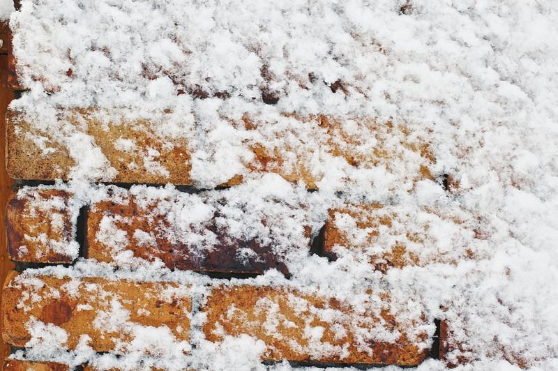 Snow_2011-08-16_09-11-50_DSC_6712_©RichardLaing(2011)
