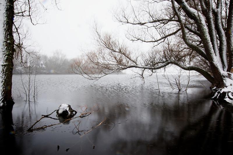 Snow_2011-08-15_09-45-10_DSC_6662_©RichardLaing(2011)