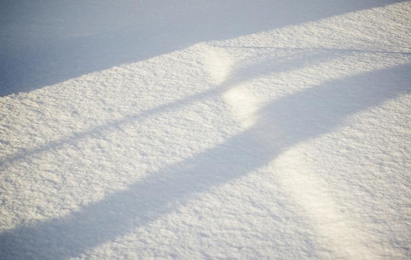 Snow_2011-08-16_09-16-13_DSC_6724_©RichardLaing(2011)