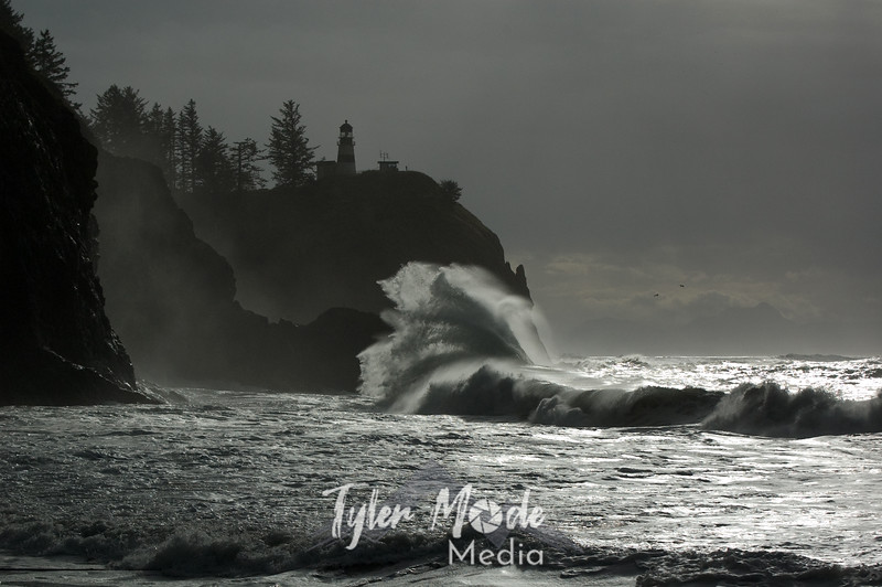 February, Cape Disappointment