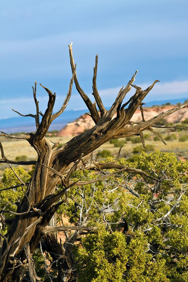 Canyonlands National Park, UT.