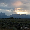 Le Grand Tetons at Sunset