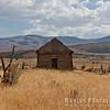 Wild Wheat and Barn