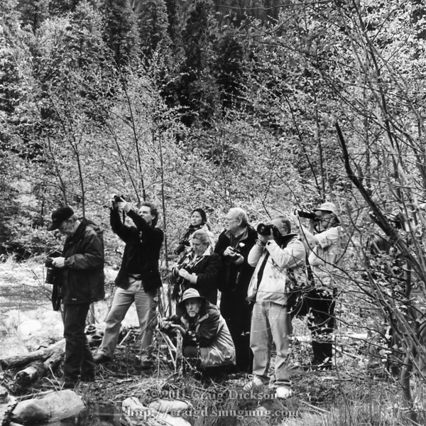 The gang (Bill Hartshorn 2nd from left, holding up camera; Dave Wyman crouching)