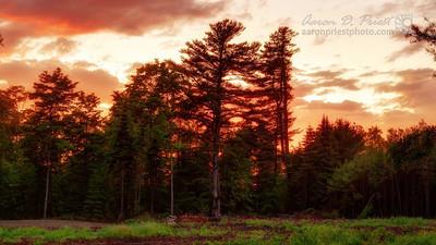 2012-05-31 Sunset 1080p