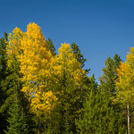 2012-09-14 Fall Color_0033 (Adjusted)