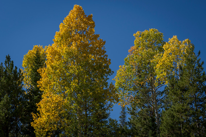 2012-09-14 Fall Color_0001 (Adjusted)