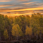 2012-09-14 Fall Color_0121 (Adjusted)-2