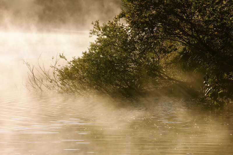 Morning mists, Plitvice