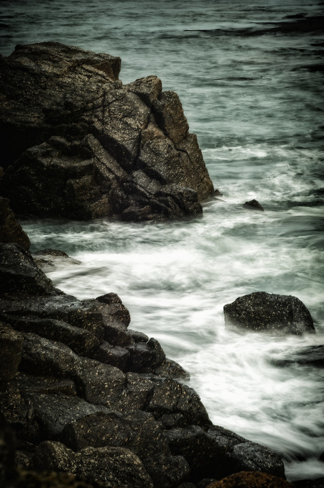 WestCoast_2012-03-10_11-21-17__DSC3974_©RichardLaing(2011)