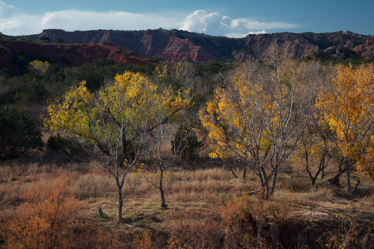 Fall colors in Palo Duro Canyon, 11/11/12. Singh Ray color intensifier/polarizer filter.