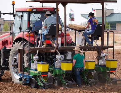 Running the cone planter 2014
